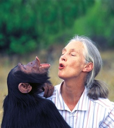Jane-goodal-habitat