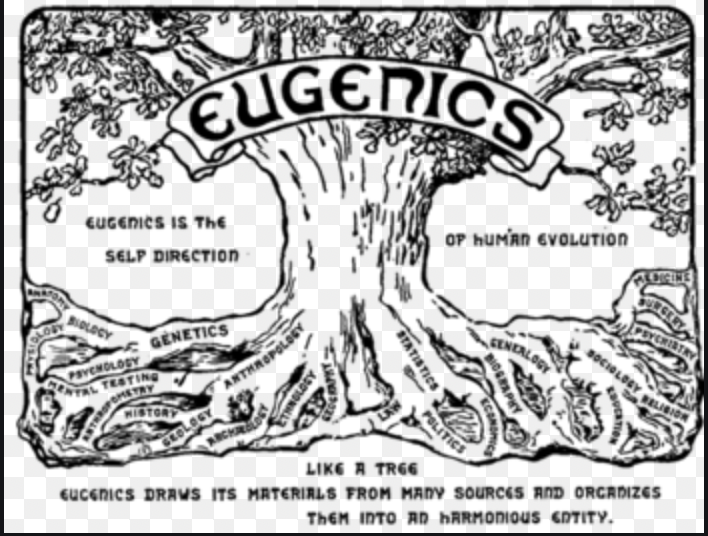 Contemporary Eugenics and Social Bleaching: Why Diluting  The Black Female Narrative Matters