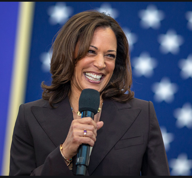 Kamala Harris, Courage, and Why the Black Collective Must Hold Hands Across White Hegemony